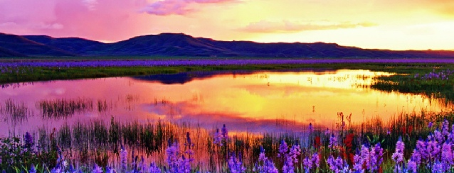 Idaho - will never cease to amaze you - See America - Visit USA Travel Guide